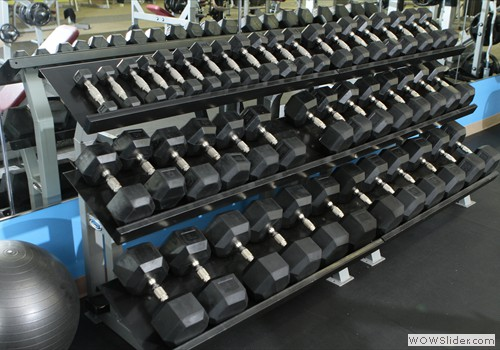 Large Selection of Free Weights